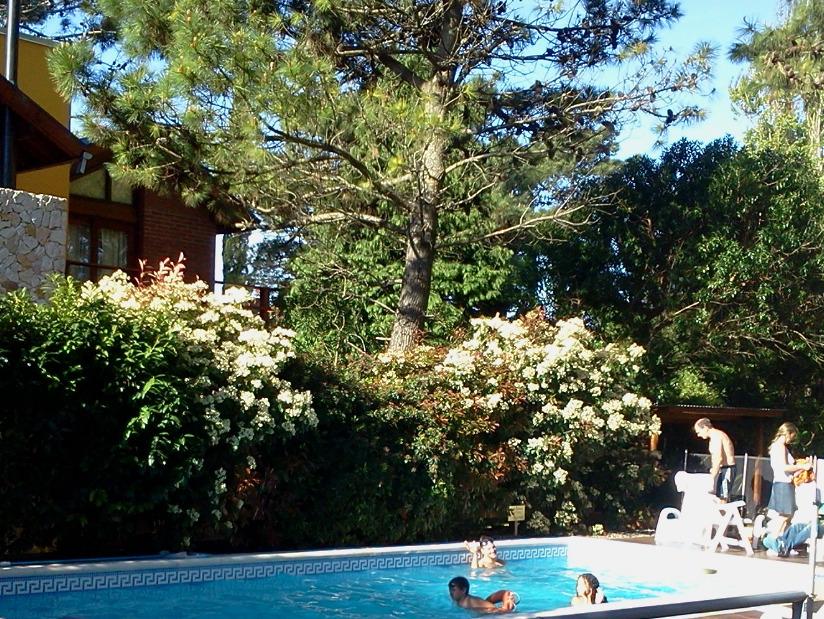 Alquilo Complejo de Cabañas EntreVerdes en Villa Gesell.