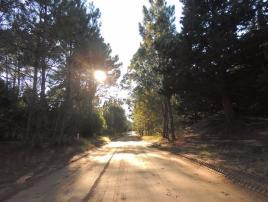 Reserva Forestal Mar de las Pampas: Atractivo Turistico en Mar de las Pampas.